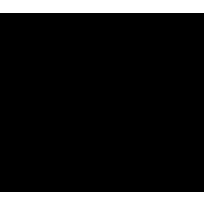 DS-12